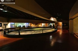 We Bring You Closer to the Museum of the Cultures of the ...