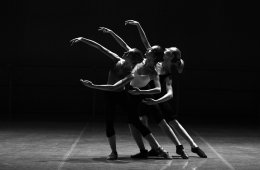 Be Part of the Municipal Dance and Performing Arts Compan...
