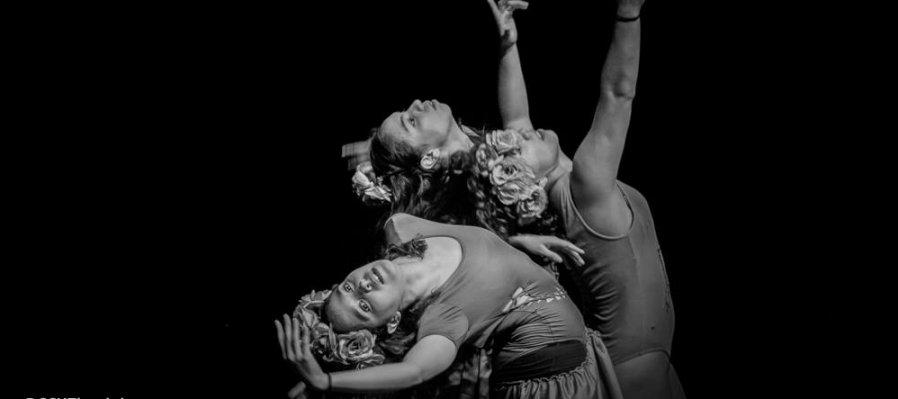 Danza, acción y comunidad