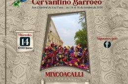 Danza Folclórica Mixcoacalli