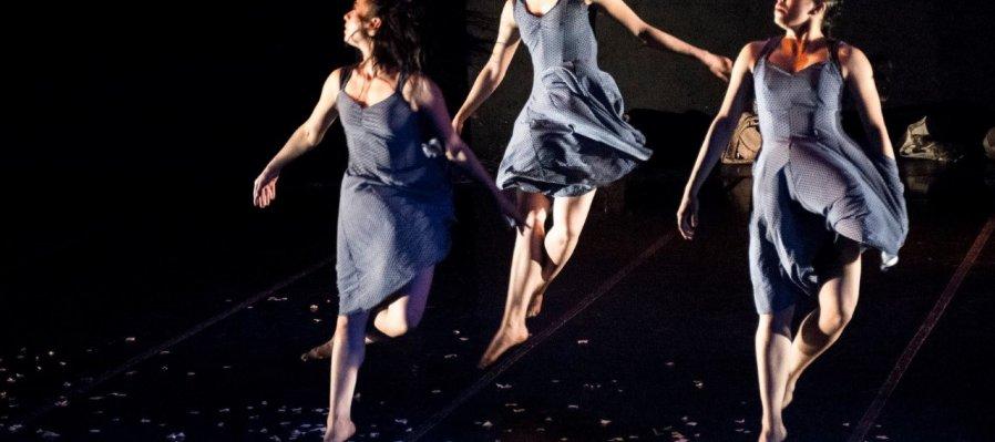 Choreographic Anthology