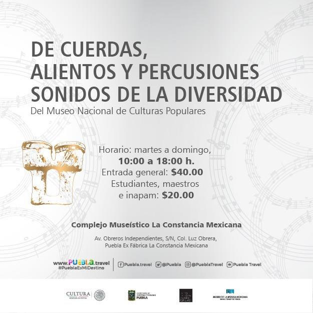 De Cuerdas, Alientos y Percusiones. Sonidos de la Diversi...