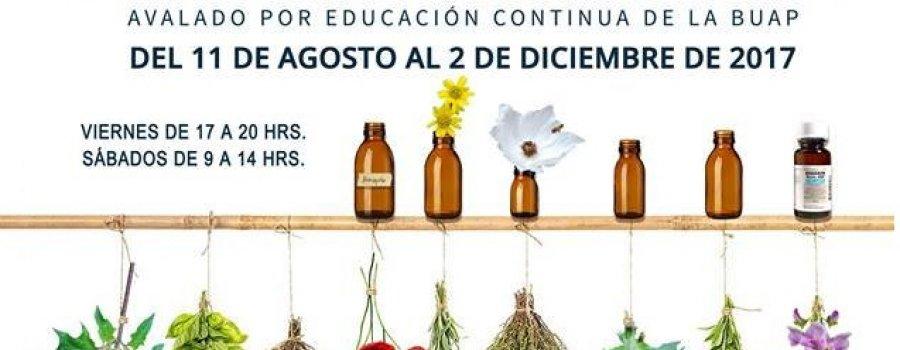 Diplomado en plantas medicinales