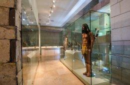 Museo del Noreste