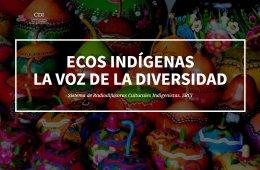 Indigenous Echoes