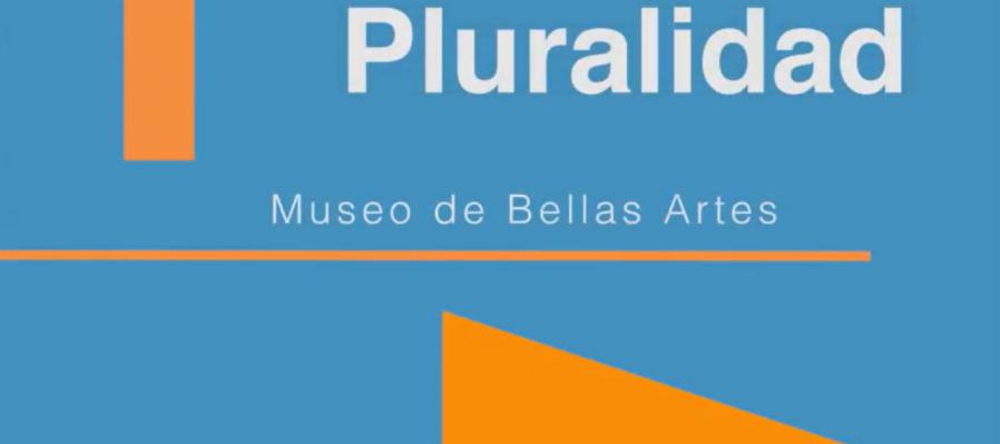 Exposición: Pluralidad, Museo de Bellas Artes