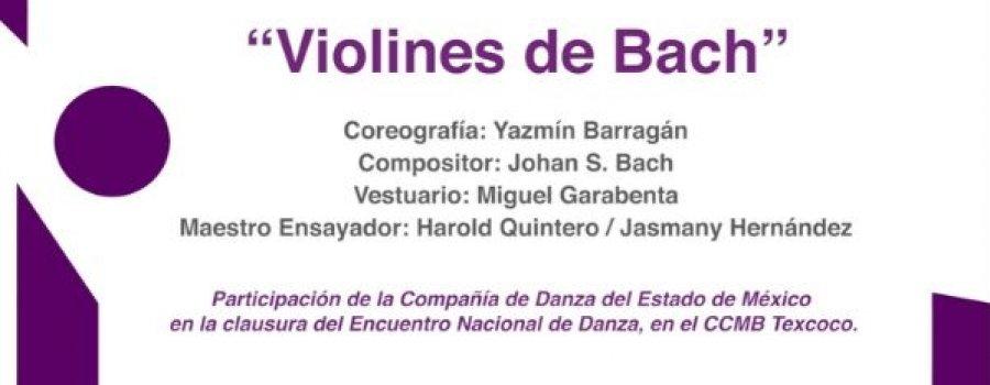 Violines de Bach, Compañía de Danza del Estado de México