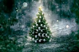El árbol de Navidad: Centro Estatal de Fomento a la Lect...