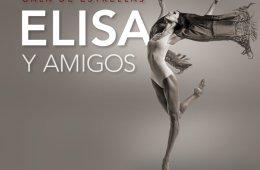 Gala de ballet, Elisa y Amigos