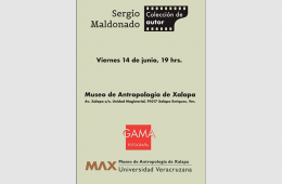 Sergio Maldonado. Colección de Autor