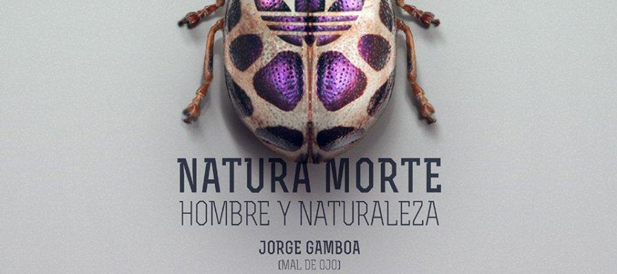 Natura Morte. Hombre y Naturaleza