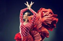 Flamenco: Aprendizaje de la Técnica