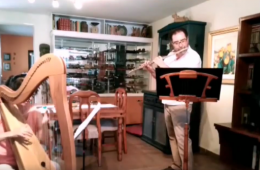 Concierto de arpa y flauta con la Orquesta Sinfónica de ...