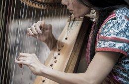 Quimeras polifónicas y el arte de tañer arpa y vihuela