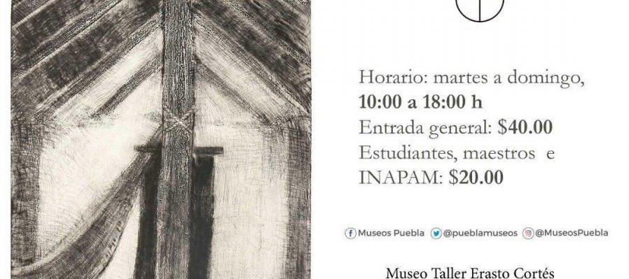 Francisco Toledo: Gráfica