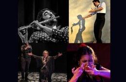 Multi-Star Flamenco Gala