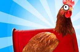 La gallina cacarea