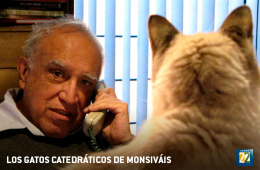Carlos Monsiváis' Professor Cats