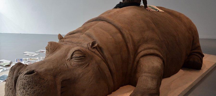 Hope Hippo