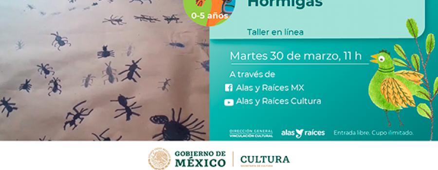 Hormigas (Taller)