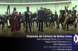 Concierto para dos flautas y orquesta. Mtro. Miguel Angel...