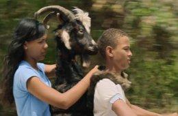 El día de la cabra