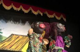 Variation of Puppets for Some Hands
