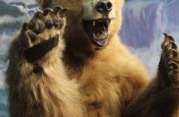 Pieza del mes: La leona y el oso