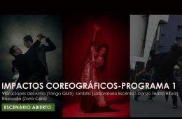 Choreographic Impacts. Program 1