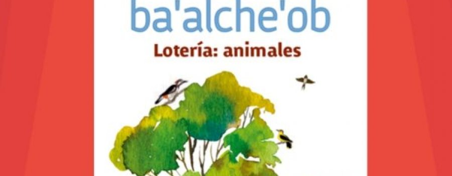 Lotería animales en MaayatꞋaan (maya)