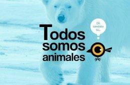 Todos somos animales
