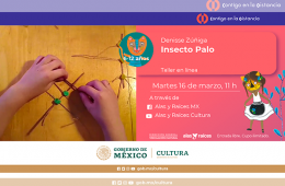 Insecto palo (Taller)