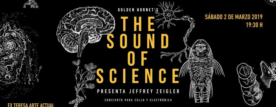 Golden Hornets. The Sound of Science | Jeffrey Zeigler