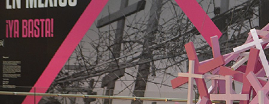 Feminicidios en México: violencias y cautiverios