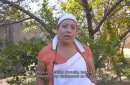 Josefina Guzmán: Cocineras de Tenancingo