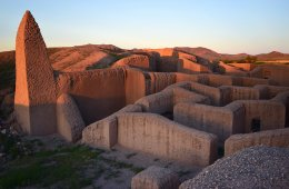 The Casas Grandes Culture