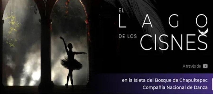 El Lago de los Cisnes en la Isleta del Bosque de Chapultepec