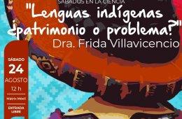 Lenguas indígenas ¿patrimonio o problema?