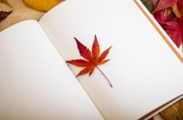El papel de las revistas literarias en México