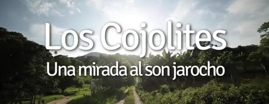 Los Cojolites, una mirada al Son Jarocho