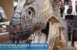 Los pequeños, grandes dinosaurios