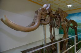 The Mammoth of Tultepec