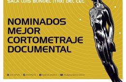Nominados Mejor Cortometraje Documental