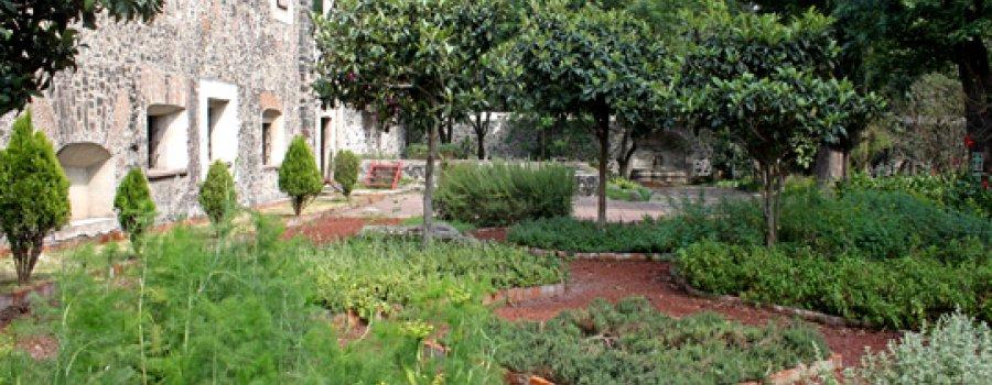Visita guiada sobre la sustentabilidad en los conventos
