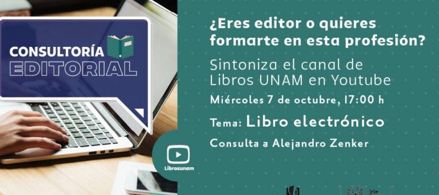 Consultoría Editorial: Libro electrónico