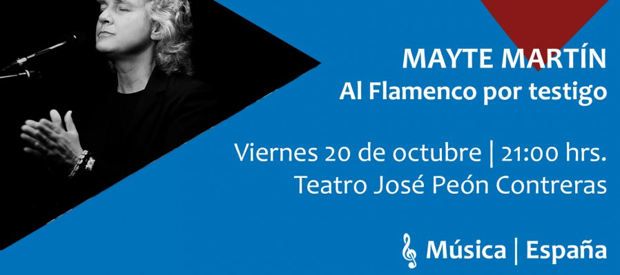 Al flamenco por testigo
