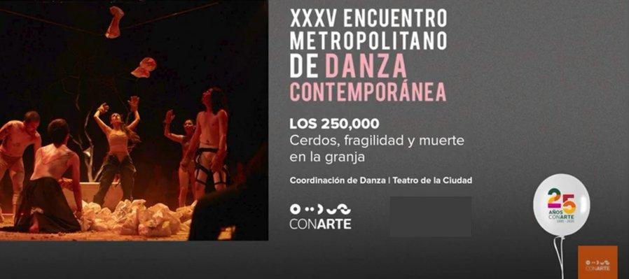 Cerdos, fragilidad y muerte en la granja con Los 250,000 en el XXXV Encuentro Metropolitano de Danza Contemporánea