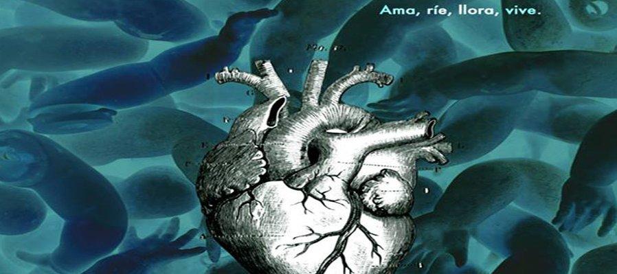 Micrografía del Humano