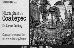 Miradas de Coatepec