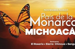 Go Visit the Sanctuaries of the Monarch Butterflies